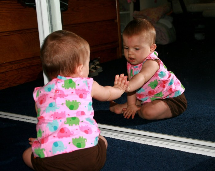 lacanian psychoanalysis literary theory and criticism notes baby playing in mirror1 jpg
