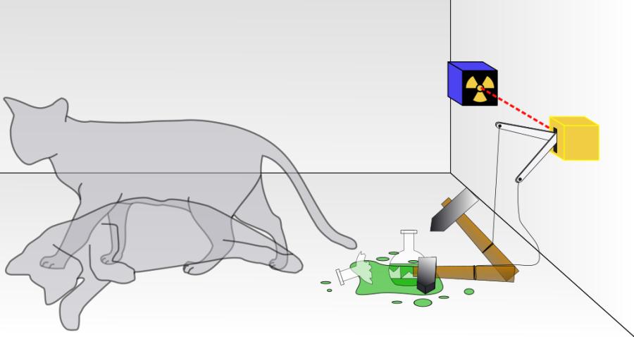 Schrodingers_cat.svg.png