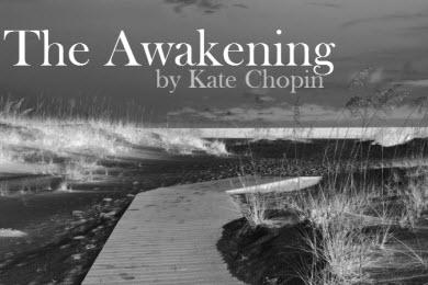 The_Awakening-60second_Recap-album_cover